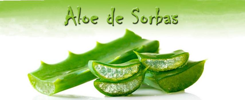 Aloe de Sorbas
